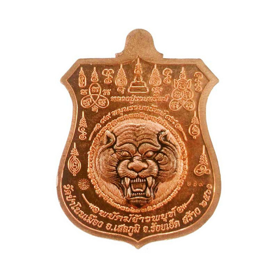 เหรียญพยัคฆ์จ้าวพยุห์ หลวงปู่หมุนเนื้อทองแดงผิวไฟลงยา