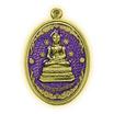 เหรียญพระพุทโธคลัง เนื้อทองทิพย์ ลงยาสีม่วง