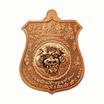 เหรียญพยัคฆ์จ้าวพยุห์ หลวงปู่หมุน เนื้อทองแดง ผิวไฟลงยาจีวร