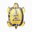 เหรียญพญาเต่ามังกร เนื้อมหาชนวน ชุบทอง