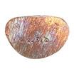 หลวงพ่อเงิน วัดบางคลาน เนื้อแร่เหล็กน้ำพี้เททองโบราณ ที่ระลึกครบ 115 ปี สมเด็จพระสังฆราช (แพ)