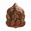เหรียญพระสังกัจจายน์ บาตรคู่นาคราช เนื้อทองแดง