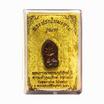 พระปรกใบมะขาม รุ่นแรก หลวงพ่อรักษ์ อนาลโย เนื้อทองแดงผิวรุ้ง